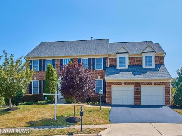 8600 Wales Court, Gainesville, VA 20155 (#PW10289137) :: Colgan Real Estate