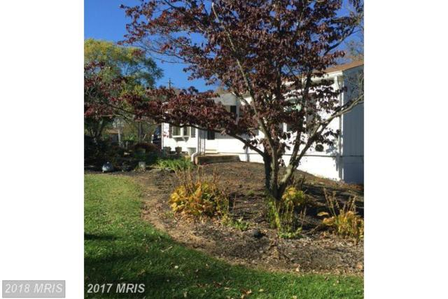 14734 Vint Hill Road, Nokesville, VA 20181 (#PW10293008) :: Jacobs & Co. Real Estate