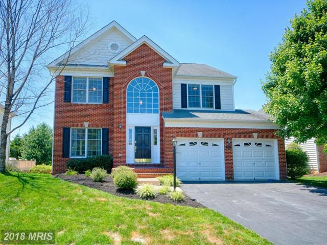 5413 Bowers Hill Drive, Haymarket, VA 20169 (MLS #PW10293808) :: Explore Realty Group