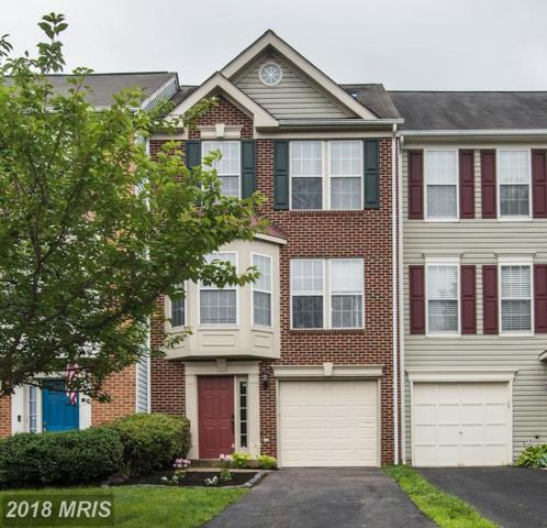 12037 Country Mill Drive, Bristow, VA 20136 (#PW10293915) :: Jacobs & Co. Real Estate