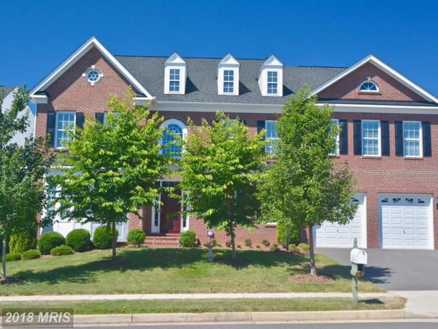 14430 Broadwinged Drive, Gainesville, VA 20155 (MLS #PW10294088) :: Explore Realty Group
