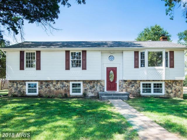 13471 Herring Lane, Nokesville, VA 20181 (#PW10295082) :: Jacobs & Co. Real Estate