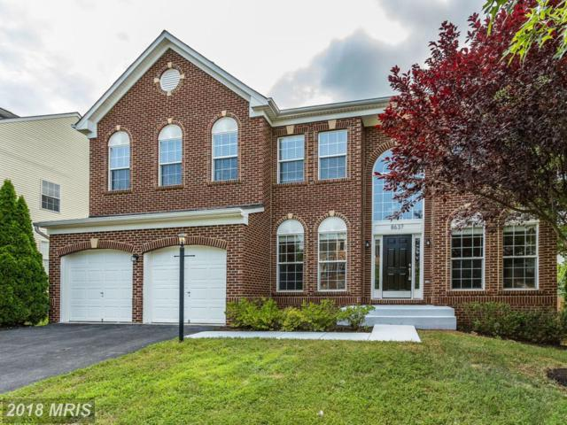 8637 Placid Lake Court, Bristow, VA 20136 (#PW10296896) :: Network Realty Group