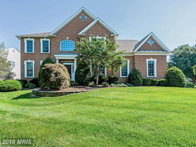 15090 Sycamore Hills Place, Haymarket, VA 20169 (#PW10296906) :: Network Realty Group