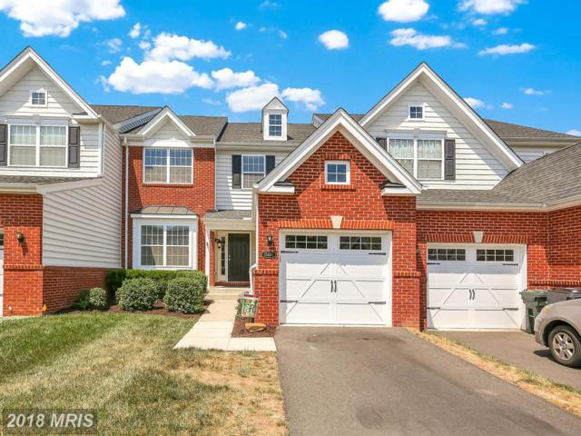 15446 Painters Cove Way, Haymarket, VA 20169 (#PW10297067) :: Samantha Bendigo