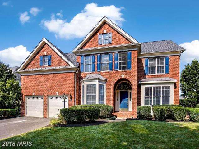 5586 Tournament Drive, Haymarket, VA 20169 (MLS #PW10297275) :: Explore Realty Group