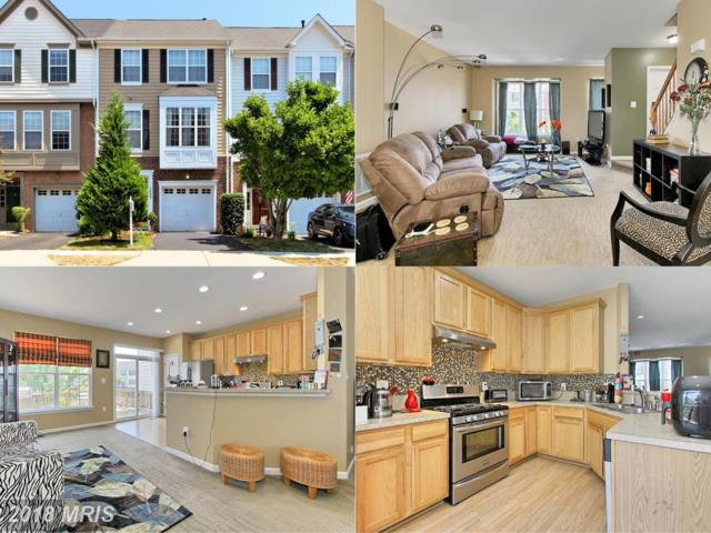 14266 Legend Glen Court, Gainesville, VA 20155 (#PW10298647) :: Colgan Real Estate