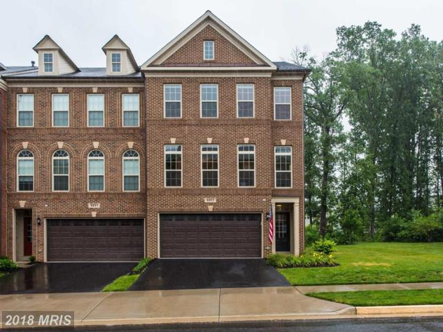 6653 Bartrams Forest Lane, Haymarket, VA 20169 (#PW10300891) :: Jacobs & Co. Real Estate