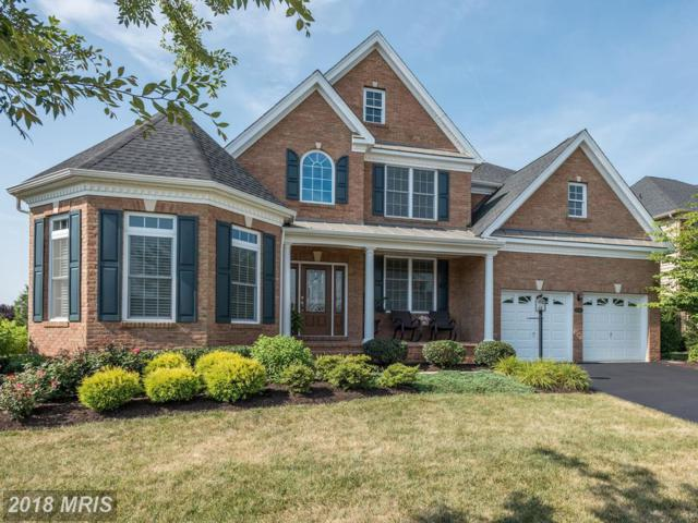 15358 Admiral Baker Circle, Haymarket, VA 20169 (#PW10301733) :: Pearson Smith Realty