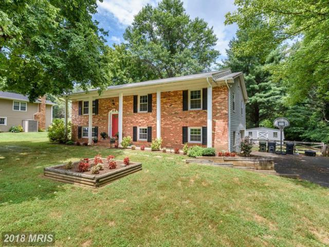 15804 Palmer Lane, Haymarket, VA 20169 (#PW10301987) :: Pearson Smith Realty