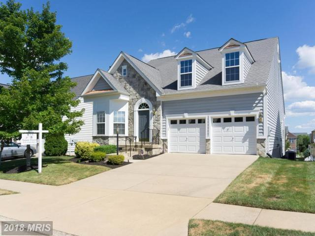 5985 Piney Grove Way, Gainesville, VA 20155 (#PW10302013) :: Charis Realty Group