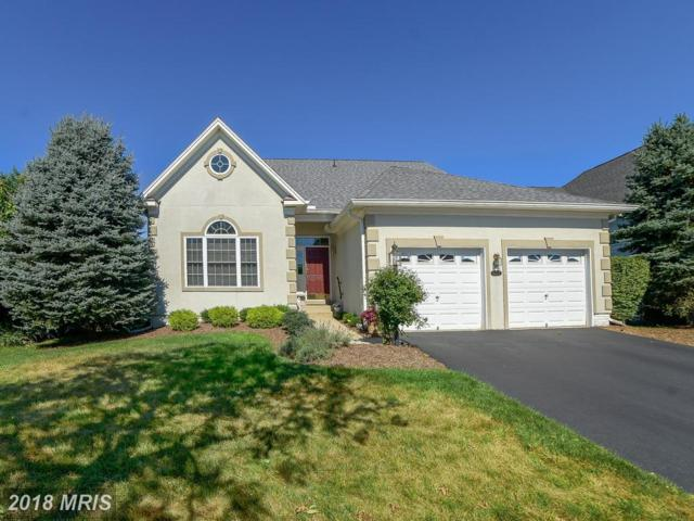 15577 Alderbrook Drive, Haymarket, VA 20169 (#PW10302181) :: The Nemerow Team