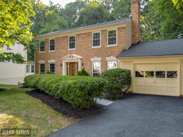 11790 Cotton Mill Drive, Woodbridge, VA 22192 (#PW10302301) :: The Nemerow Team