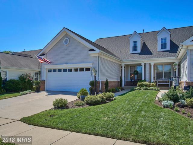 13709 Currant Loop, Gainesville, VA 20155 (#PW10302707) :: Colgan Real Estate