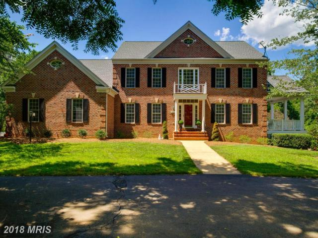 13880 Shelter Manor Drive, Haymarket, VA 20169 (#PW10302863) :: Pearson Smith Realty