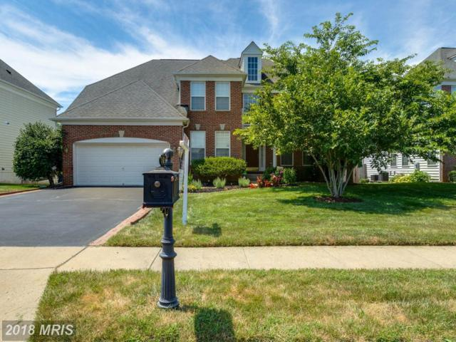 13621 America Drive, Bristow, VA 20136 (#PW10303251) :: The Putnam Group