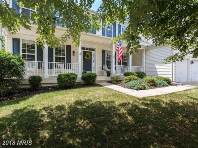 8368 Tenbrook Drive, Gainesville, VA 20155 (#PW10303802) :: Colgan Real Estate