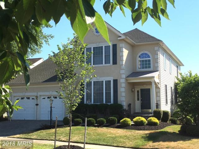 15542 Alderbrook Drive, Haymarket, VA 20169 (MLS #PW10303852) :: Explore Realty Group