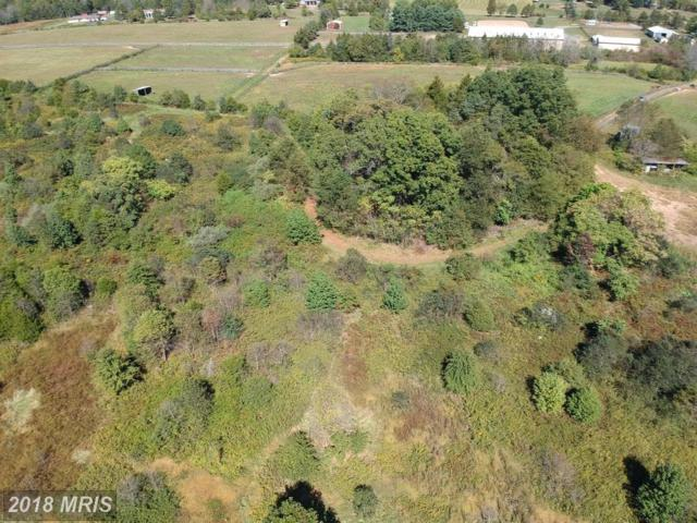 0-- LOT 1 Fitzwater Drive, Nokesville, VA 20181 (#PW10304291) :: The Withrow Group at Long & Foster