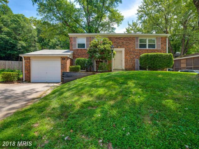 13705 Mayfair Court, Woodbridge, VA 22193 (MLS #PW10305163) :: Explore Realty Group