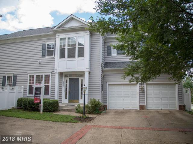 10002 Pentland Hills Way, Bristow, VA 20136 (#PW10309481) :: Bob Lucido Team of Keller Williams Integrity