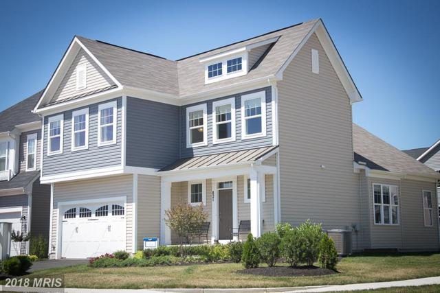 10385 Twin Leaf Drive, Bristow, VA 20136 (#PW10321060) :: Network Realty Group