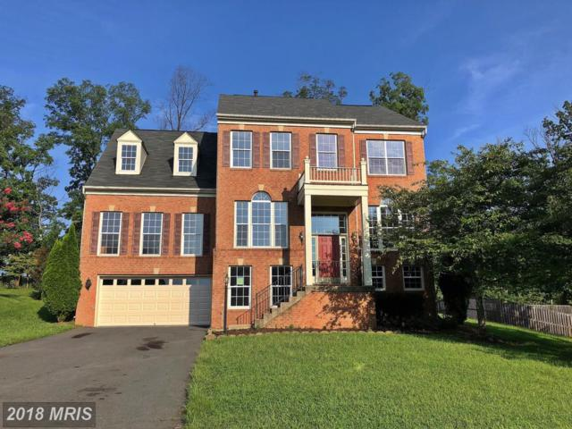 8608 Placid Lake Court, Bristow, VA 20136 (#PW10321557) :: Network Realty Group