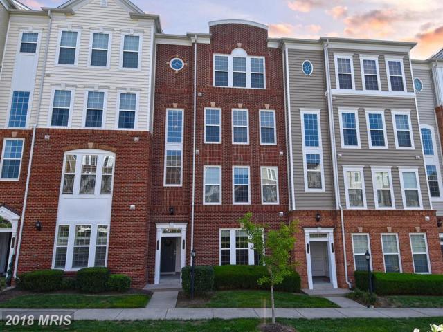 14513 Barkham Drive, Woodbridge, VA 22191 (#PW10322496) :: Browning Homes Group