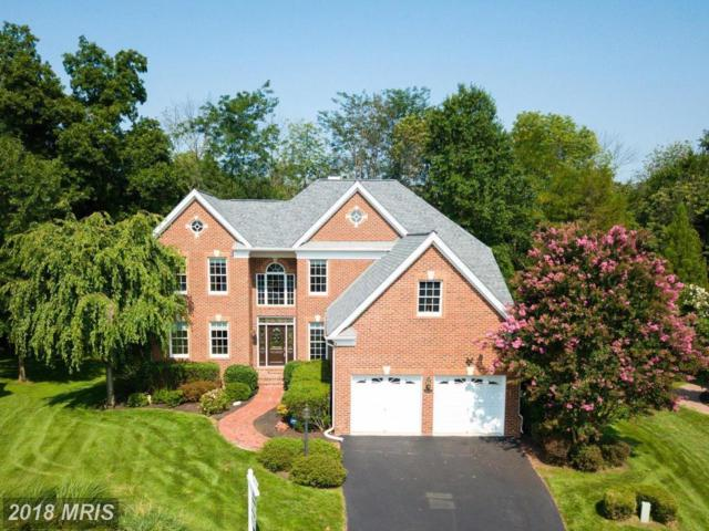 15604 Ryder Cup Drive, Haymarket, VA 20169 (#PW10323274) :: Network Realty Group