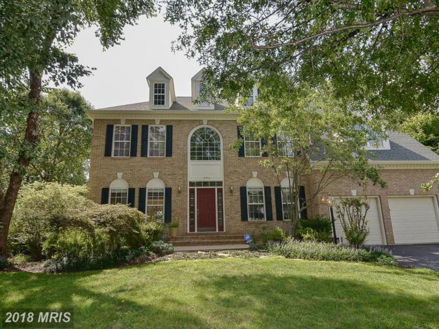 14456 Sedona Drive, Gainesville, VA 20155 (#PW10324289) :: Network Realty Group
