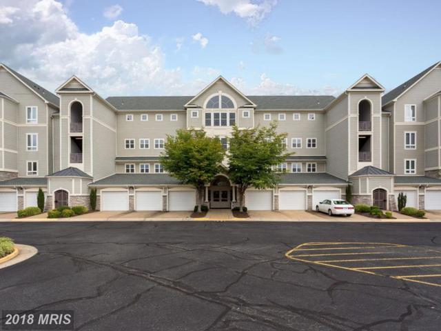 1621 Ladue Court #101, Woodbridge, VA 22191 (#PW10326538) :: Green Tree Realty