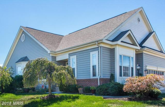 13055 Galena Court, Gainesville, VA 20155 (#PW10326568) :: Green Tree Realty
