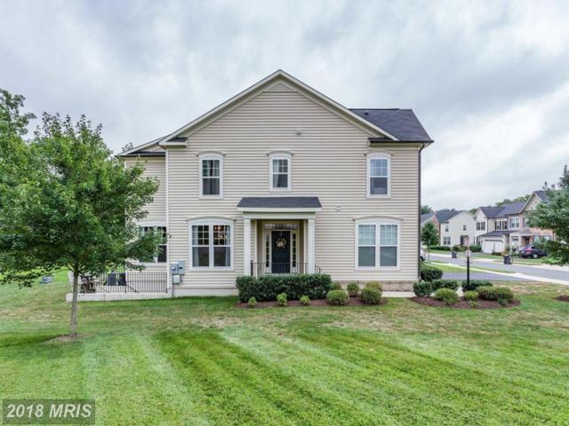 9341 Angel Falls Street, Bristow, VA 20136 (#PW10327495) :: TVRG Homes