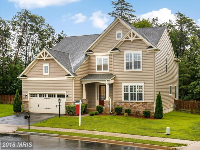 13822 Estate Manor Drive, Gainesville, VA 20155 (#PW10329418) :: Samantha Bendigo
