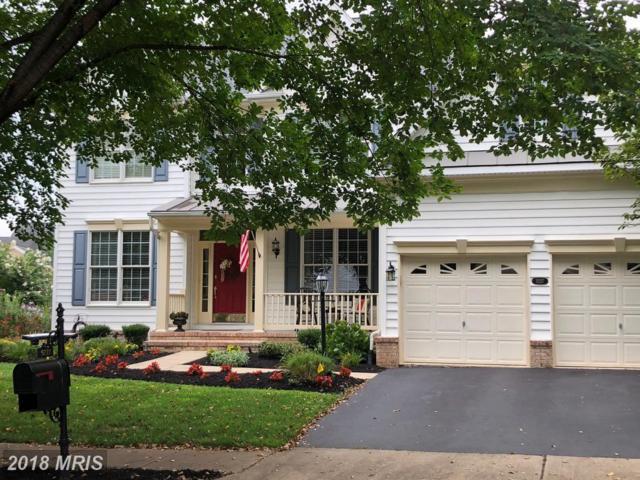 5227 Blossom Hill Drive, Haymarket, VA 20169 (#PW10329876) :: Colgan Real Estate