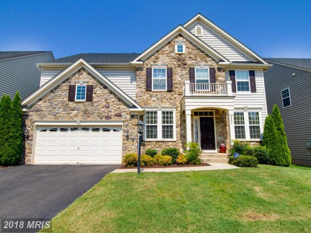 8847 Calbera Court, Gainesville, VA 20155 (#PW10334566) :: Samantha Bendigo