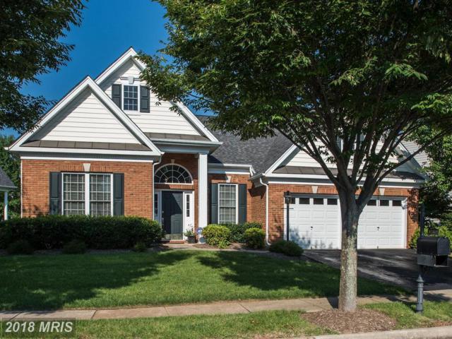 15569 Legacy Way, Haymarket, VA 20169 (#PW10338680) :: Colgan Real Estate
