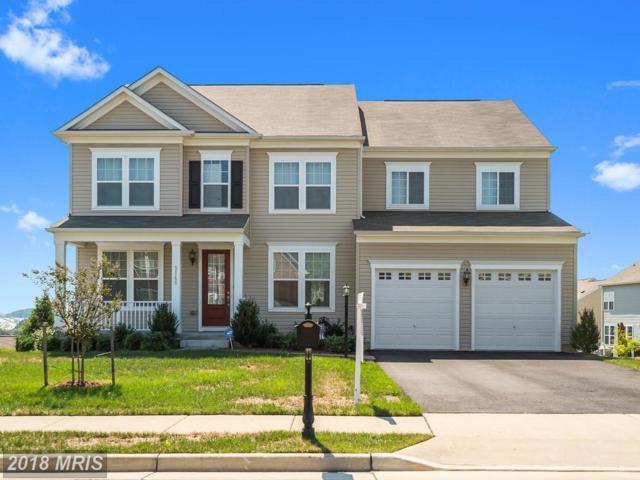3146 Fledgling Circle, Woodbridge, VA 22193 (#PW10339287) :: The Maryland Group of Long & Foster