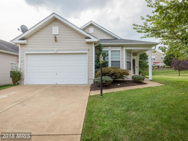 3614 Secret Grove Court, Dumfries, VA 22025 (#PW10339634) :: The Maryland Group of Long & Foster