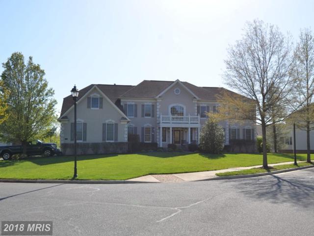 6000 Empire Lakes Court, Haymarket, VA 20169 (#PW10345933) :: Colgan Real Estate