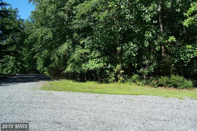 7381 Kurt Kahn Trail, Manassas, VA 20112 (#PW10348916) :: RE/MAX Executives