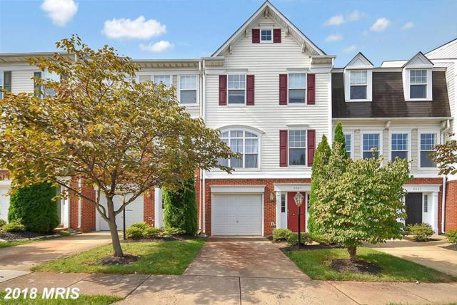 8025 Duck Pond Terrace, Manassas, VA 20111 (#PW10350713) :: RE/MAX Executives