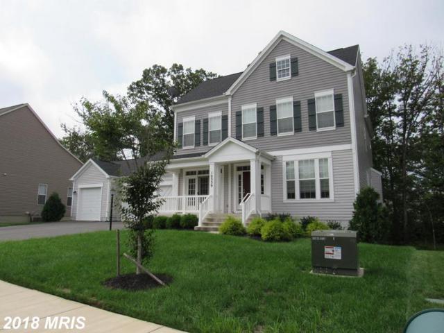 10339 Spring Iris Drive, Bristow, VA 20136 (#PW10351854) :: RE/MAX Gateway