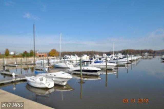 485 Harbor Side Street #208, Woodbridge, VA 22191 (#PW9890935) :: Pearson Smith Realty
