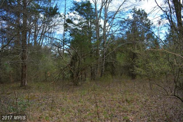 16529 Gaines Road, Broad Run, VA 20137 (#PW9908235) :: LoCoMusings