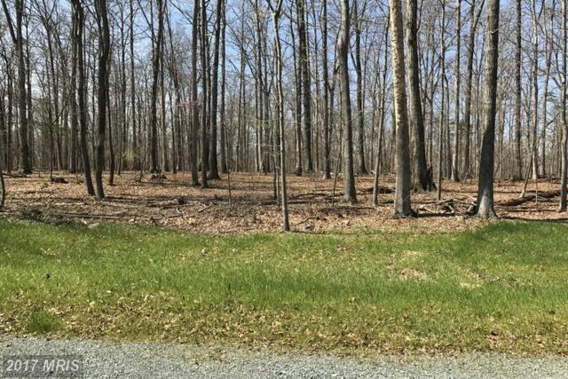 15030 Stonegate Place, Nokesville, VA 20181 (#PW9921348) :: Pearson Smith Realty