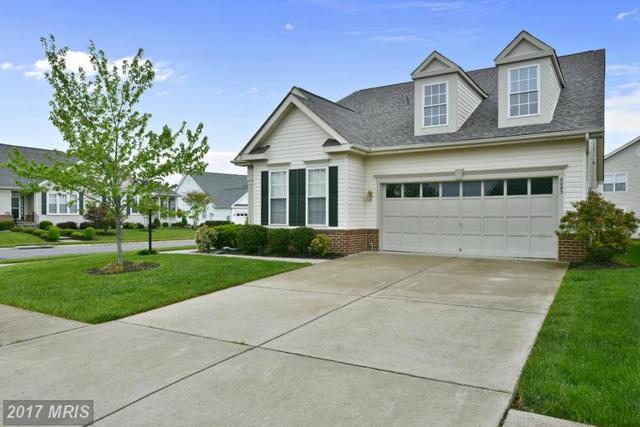 6083 Piney Grove Way, Gainesville, VA 20155 (#PW9923399) :: RE/MAX Gateway