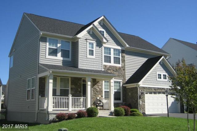 13870 Estate Manor Drive, Gainesville, VA 20155 (#PW9947659) :: LoCoMusings