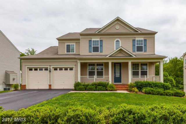 16453 Chattanooga Lane, Woodbridge, VA 22191 (#PW9955980) :: LoCoMusings