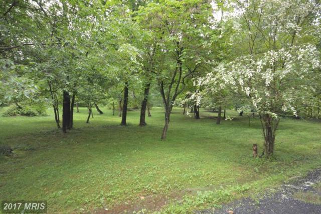 15509 Thoroughfare Road, Gainesville, VA 20155 (#PW9956003) :: LoCoMusings
